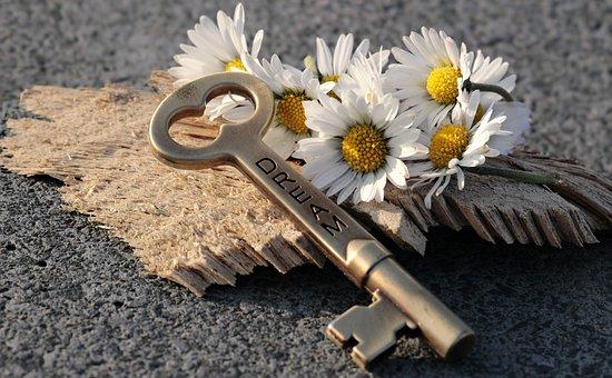 Key, Heart, Daisy, Love, Wood