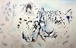 leopard, cat, beast