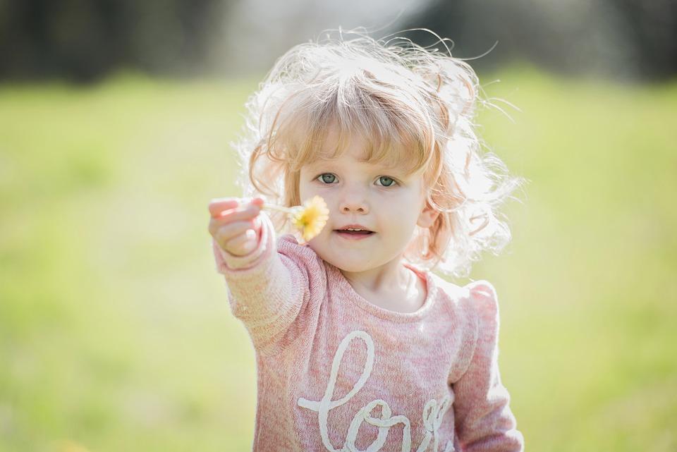 子, 幼児, かわいい, ブロンド, 花, タンポポ