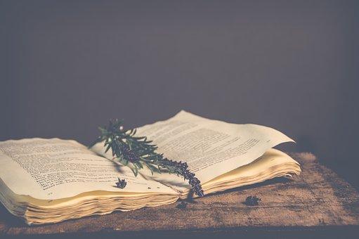 No Person, Open Book, Book, Vintage