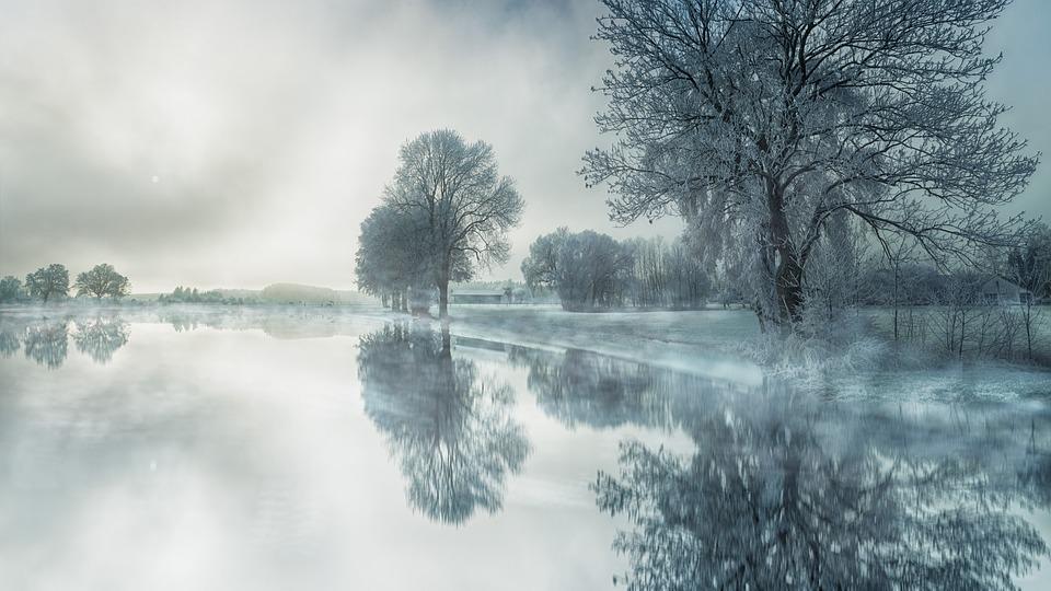 Natur, Träd, Dimma, Vatten, Snö, Sjö, Spegling