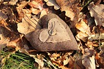 heart, nature, foliage