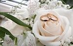 flower, wedding, nature