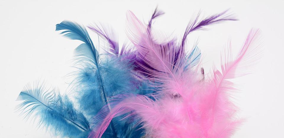 春, ふわふわ, わずかに, 柔軟性, 入札, 芸術的に, 容易さ, 風通しの良い, フェザー級, 飛行