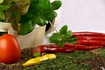 tomato, paprika, pepper
