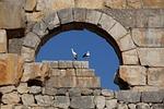 stone, wall, architecture