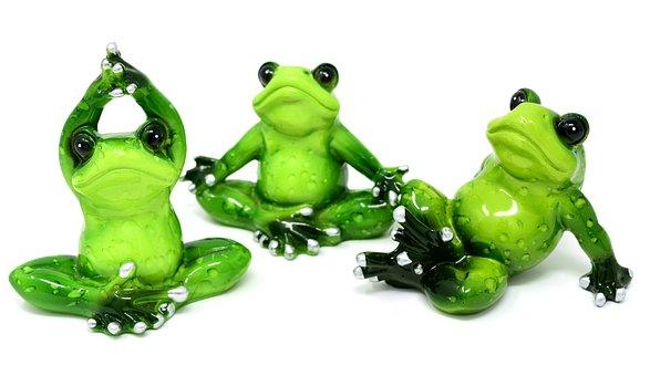 60 Kostenlose Yoga Frosch Und Yoga Bilder Pixabay