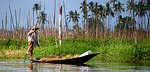 boat, foot, rowing