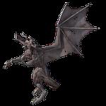 dragon, fantasy, mythology