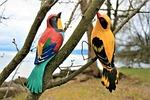 para, romance, birds