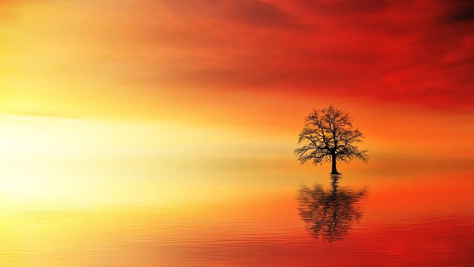 Sunset, Dawn, Sun, Nature, Dusk, Ocean, Water
