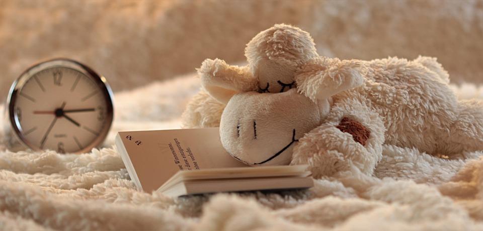 静物, 子羊, ラム, 動物のぬいぐるみ, 抱きしめる, 快適, 嘘をつく, 疲れた, 本を読む