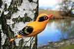 ornament, birch, bird