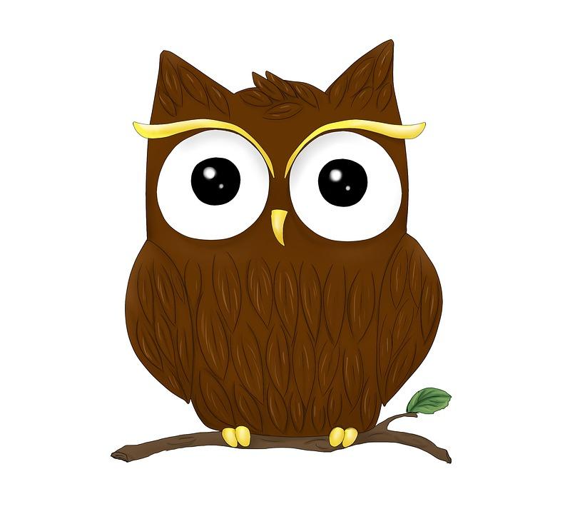Hewan Burung Hantu Grafis Gambar Gratis Di Pixabay