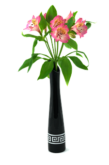 flower vase free pictures on pixabay. Black Bedroom Furniture Sets. Home Design Ideas