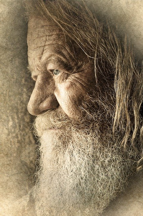Free Photo Old Man Male Face Beard