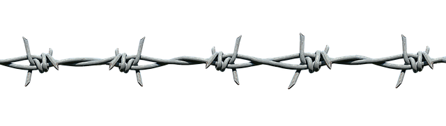 Barbed wire demarcation · free photo on pixabay