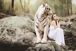 charakter, świata zwierząt, biały tygrys bengalski