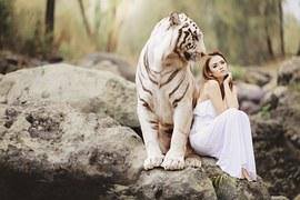Nature, Animal World