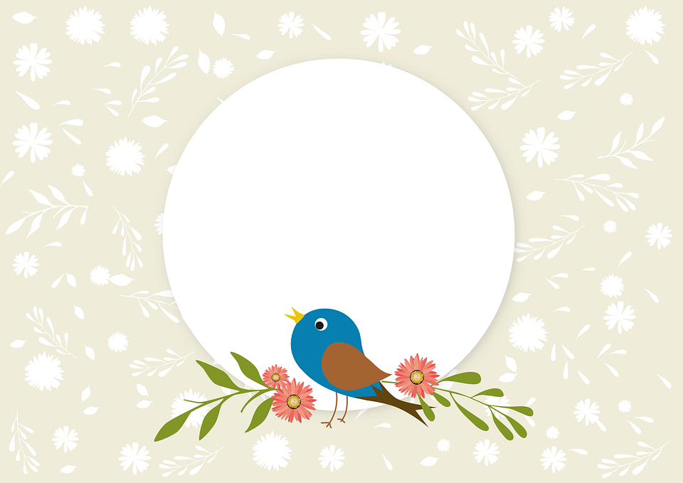 Frühling, Vogel, Natur, Singvogel, Hintergrund
