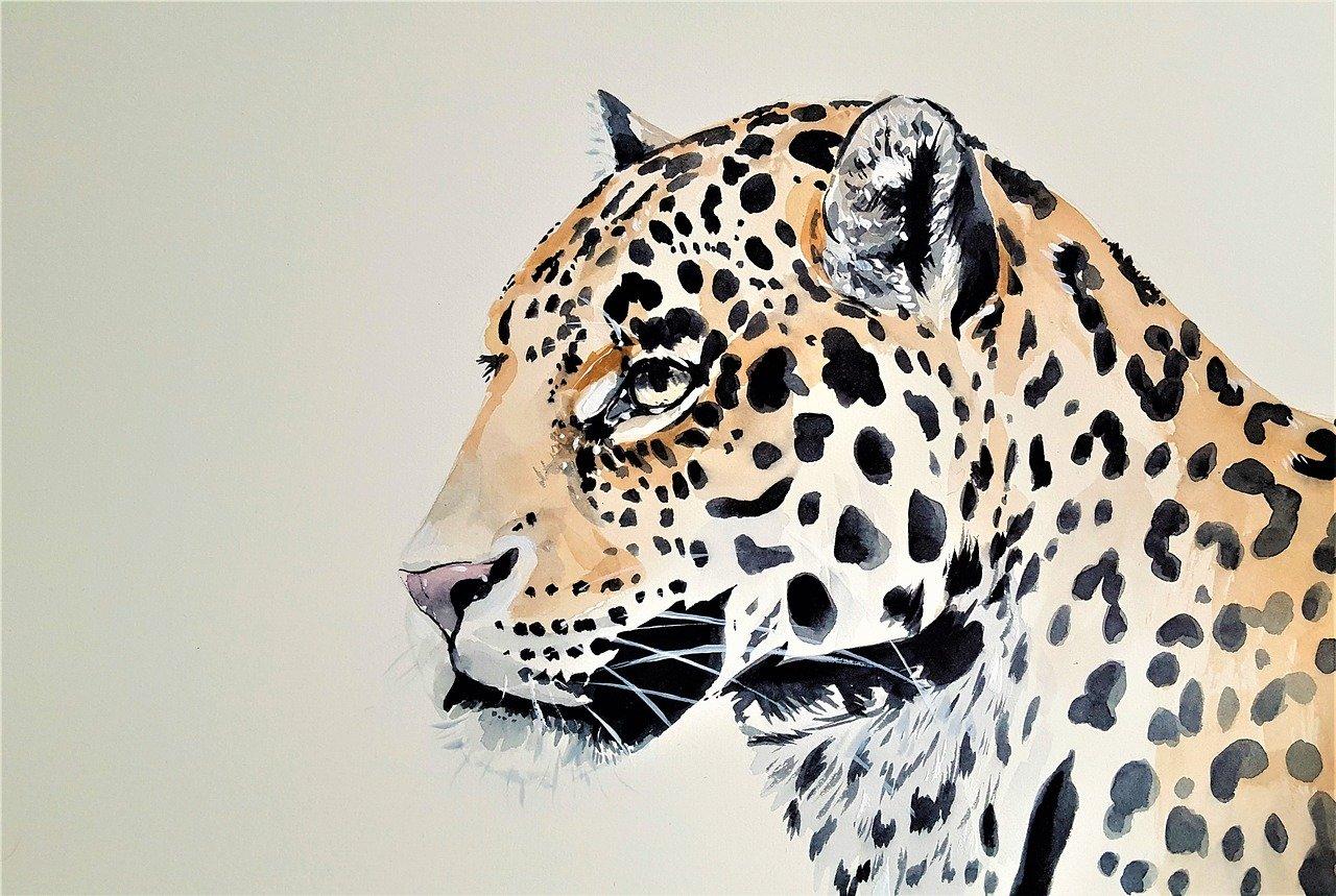 вас картинки леопарда абстракция столу подают лепешкой