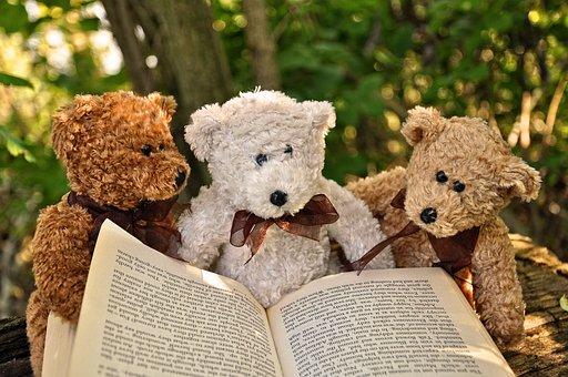 Bear, Teddybear, Toy, Cuddly Toy, Teddy