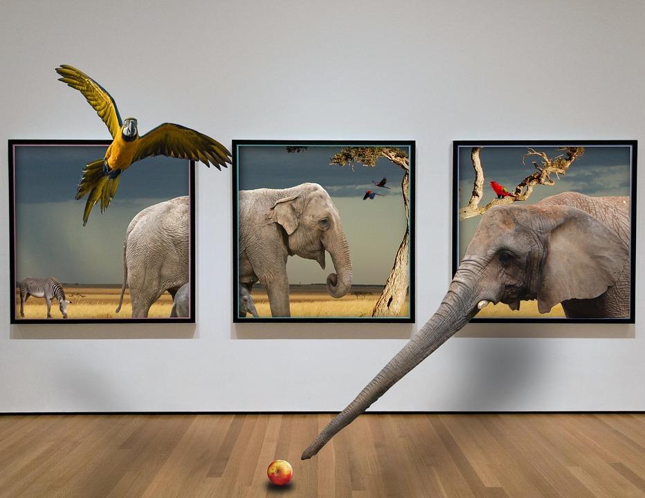 Bilderrahmen Tier Hintergrund · Kostenloses Foto auf Pixabay