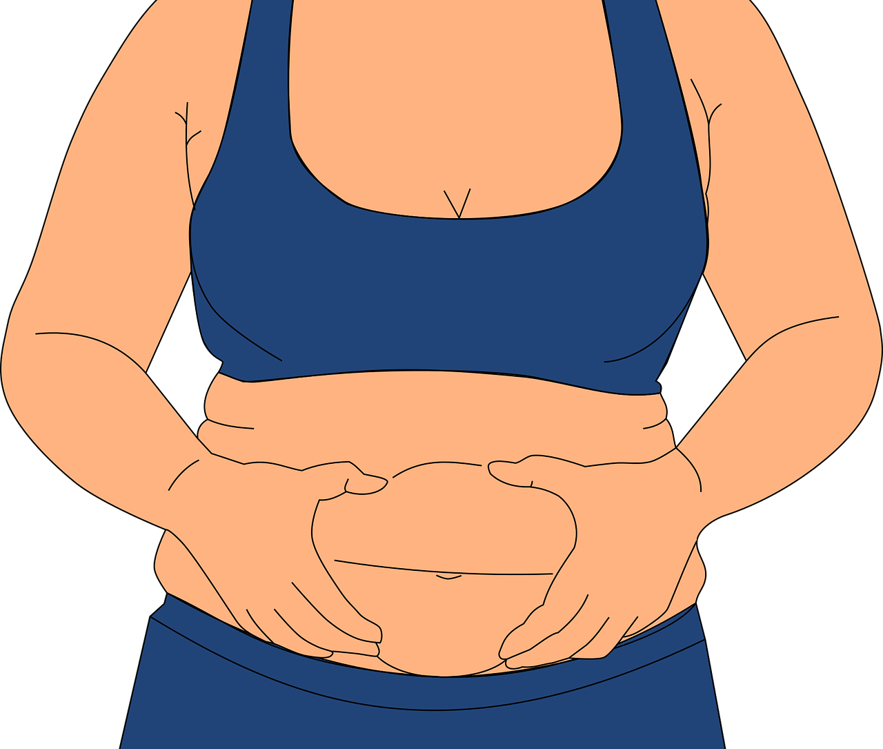 Obesity Fatness Love Handles - Free vector graphic on Pixabay