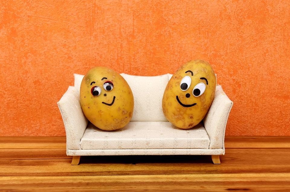 Couch Potatoes, Zabawny, Ziemniaki, Leniuchowanie, Sofa