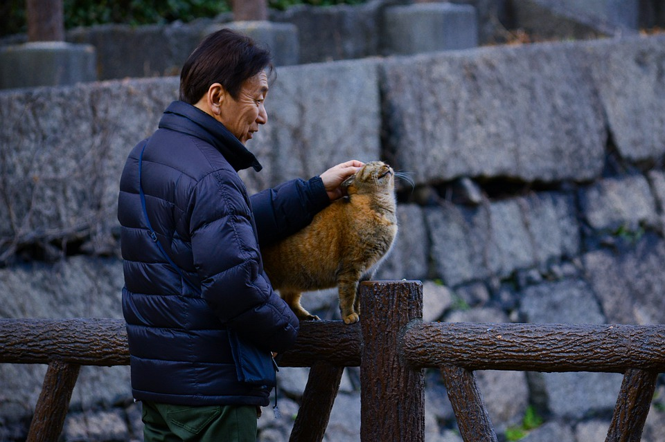 Outdoors, People, Portrait, Adult, Cat, Osaka Castle