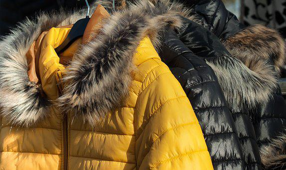 毛皮, 冬, 衣服, ダウンジャケット, アノラック, ダウンジャケット