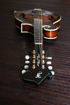 Bluegrass Mandolin, Mandolin, Instrument