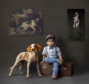Hund, Haustier, Säugetier, Menschen