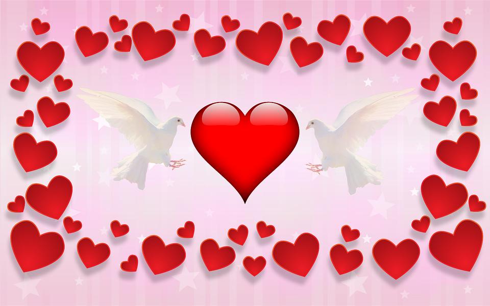 Free illustration: Valentine\'S Day, Love, Affection - Free Image ...