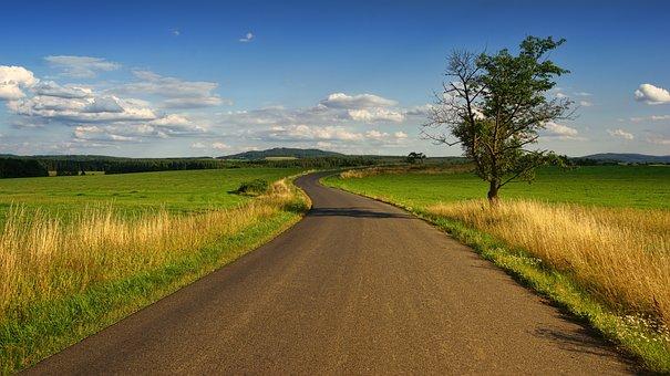 Landscape, Nature, Grass, Field, Sky