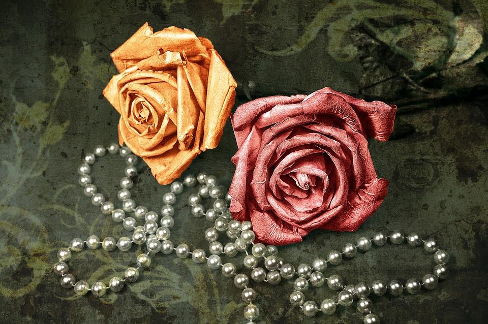 Rose Fleur Papier Photo Gratuite Sur Pixabay