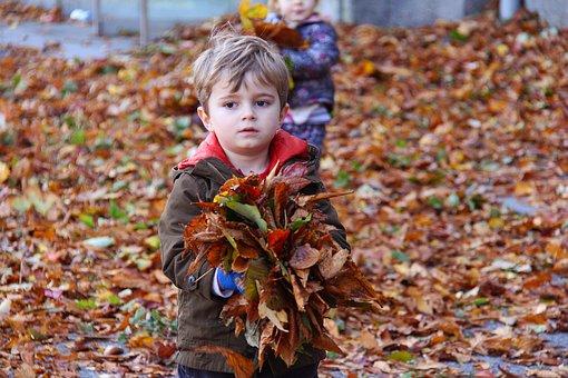 儿童, 播放, 秋天, 快乐, 乐趣, 男孩, 小, 自然, 可爱, 微笑