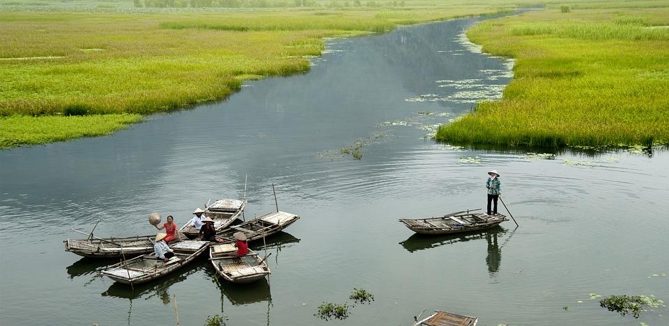 The Boat, Flower, Ninh Binh