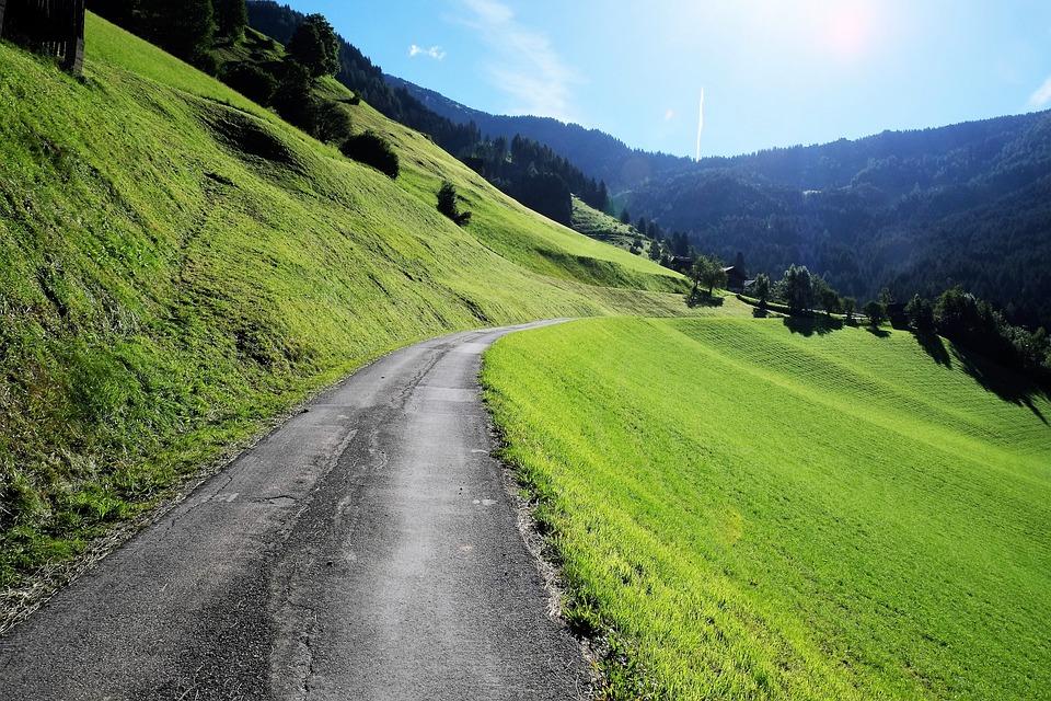 Alam Rumput Pemandangan Foto Gratis Di Pixabay