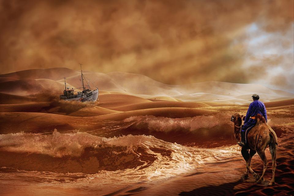 Кораб, Камила, Пустиня, Вълна, Номад, Сърф