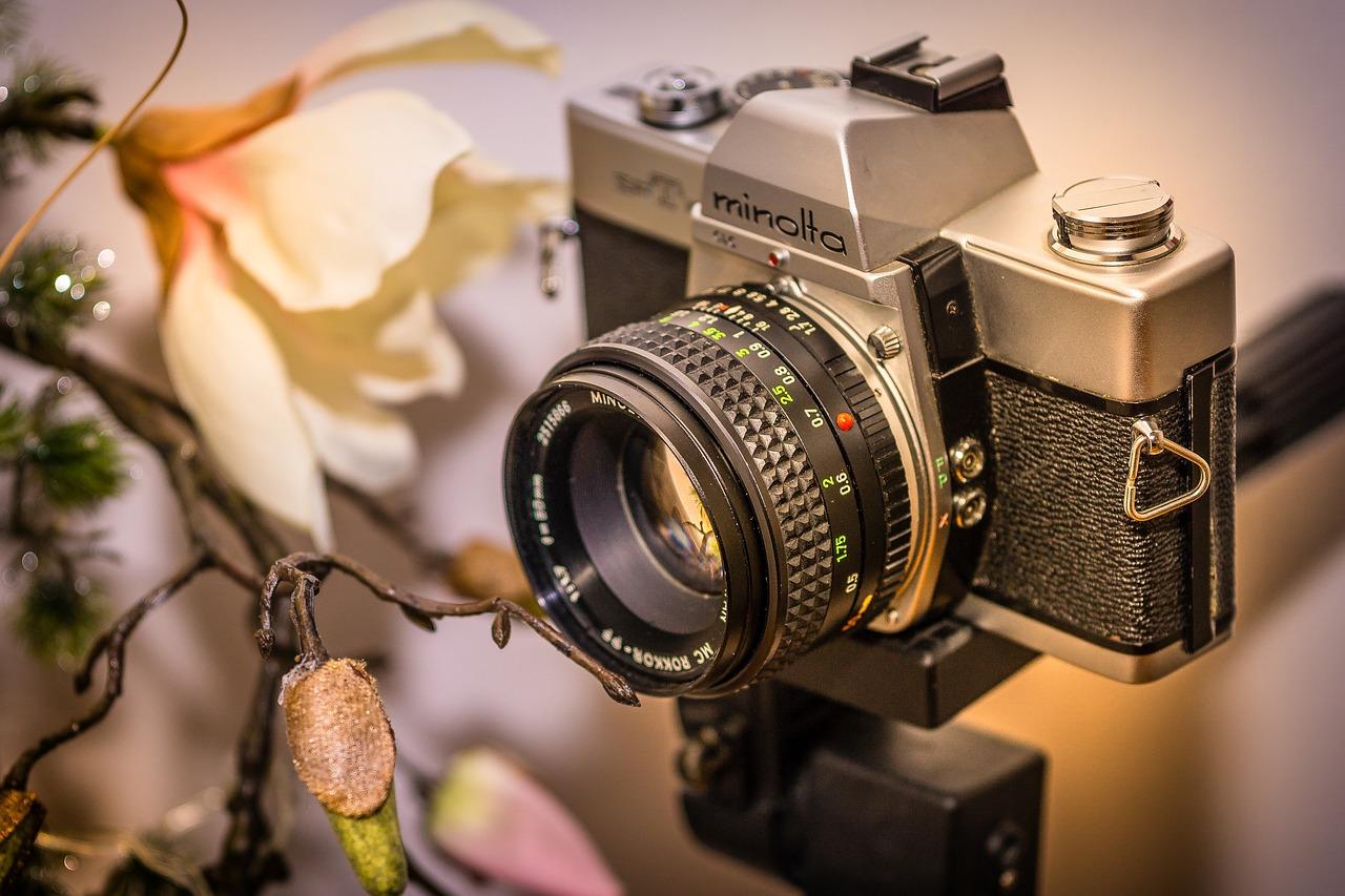 ярко-желтые цветы-колокольчики фотокамера для работы на фотостоках правило, бульдозер применяется