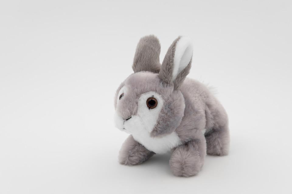 hare plush bunny cuddly free photo on pixabay