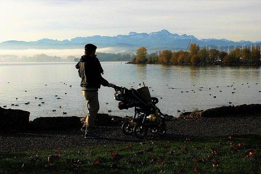 父, 湖, 川, 裁判所で, カモメ, 鳥, の波が反映され, 風景
