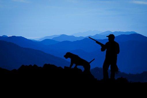 Hunting, Hunter, Animals Hunting, Bird