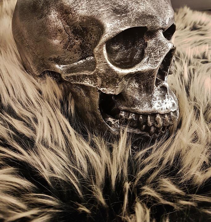 Schädel Kopf Gesicht · Kostenloses Foto auf Pixabay