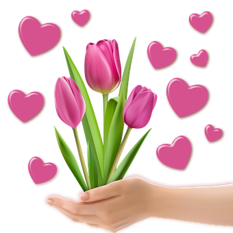 Png Image, Decoration, Tulips, Heart