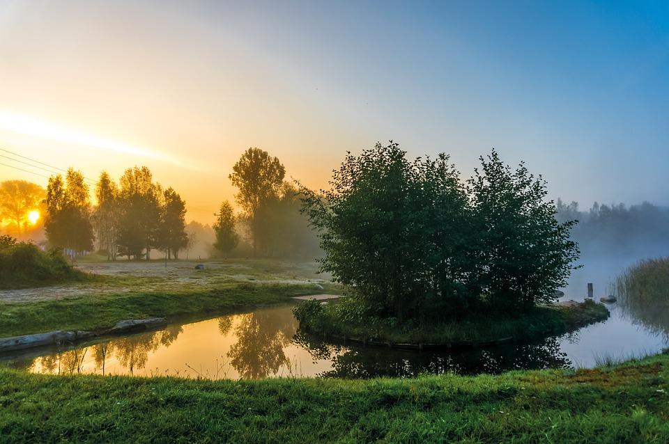 Природы, Дерево, Рассвет, Пейзаж, Вод, Трава, Озеро