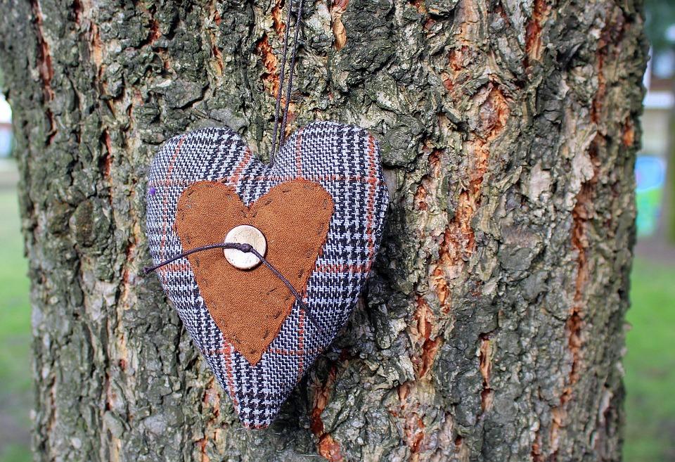 Herz, Emotionen, Dekoration, Baum, Die Rinde, Natur