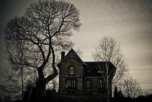Tree, Wood, Dramatic, House, Witch, Fear