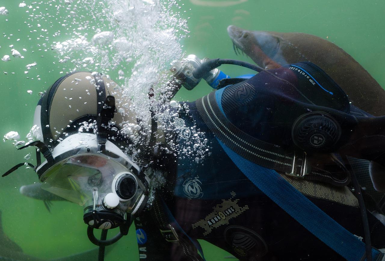 潜水员,跳水,水肺,海洋,活动,运动,冒险,浮潜,热带,游泳,设备,面具,人,鱼,水